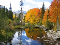 Mammoth Lakes Tourism and Sightseeing