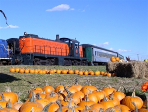 Ride the Pumpkin Patch Train - Danbury, CT 06810