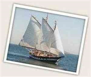 Mystic Whaler Cruises - New London, CT 06320
