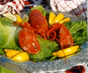 Lobster Dinner Cruises