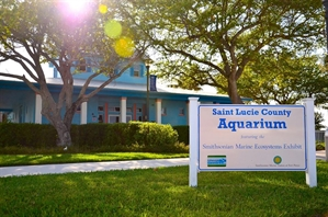 St. Lucie County Aquarium - Fort Pierce, Florida 34949