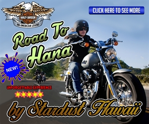 Harley Davidson Motorcycle Guided Tour to Hana - Lahaina
