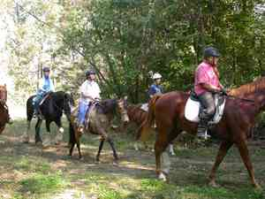 Ramey Riding Stables
