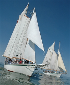 BaySail - Appledore Tall Ships - Bay City, MI 48708