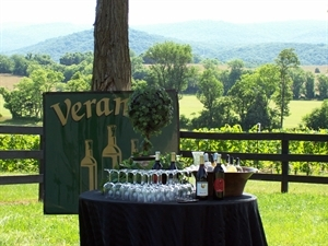 Veramar Vineyard