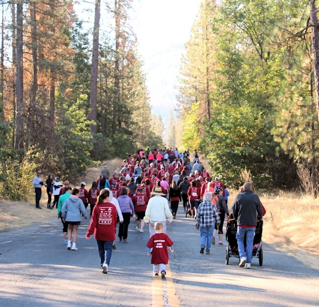 32nd Annual Smokey Bear Run/Walk, 10K and 2 mile Fun Run