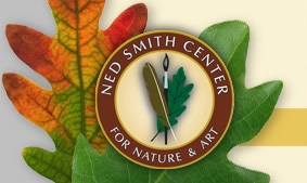 Ned Smith Center Nature and Arts Festival