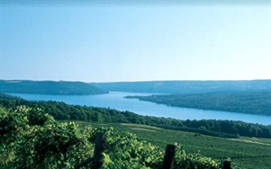 vacation in Corning and the Southern Finger Lakes
